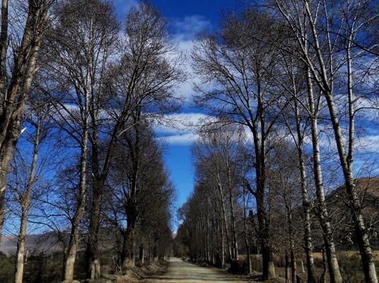 去高原,遇见蓝天白云,去稻城亚丁遇见雪山