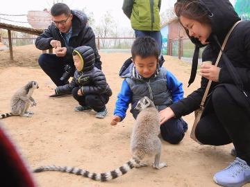 齐鲁晚报带你游济南野生动物园