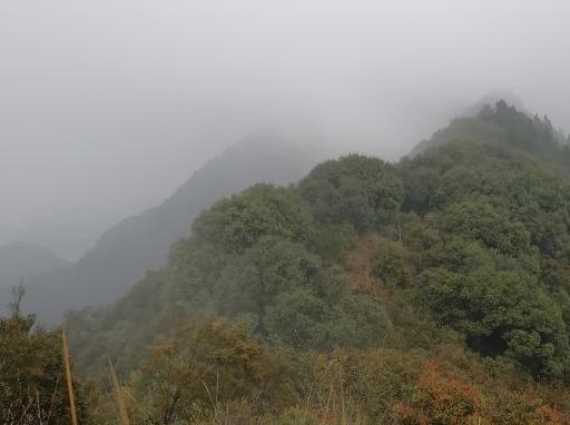 4月7日周日~永修大王山巡山去咯!