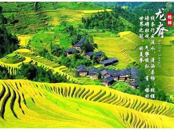 10月15-16号桂林龙脊梯田两日游
