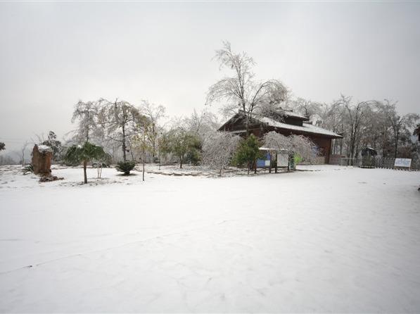 2月3-4号乐业天坑赏雪景2日游258元