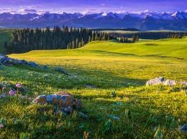 新疆伊犁喀拉峻草原徒步穿越