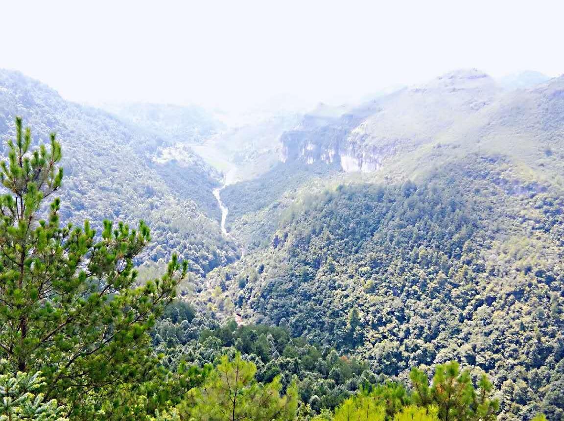 7月28日高坡红岩峡谷徒步露营赏月