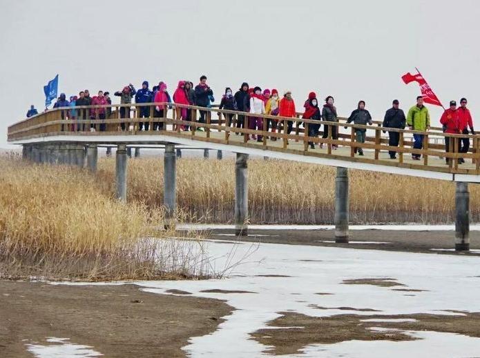 12月17日红海滩风景廊道一日游