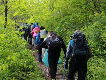 4月14日太平峪管坪村穿越西寺沟看漫山紫