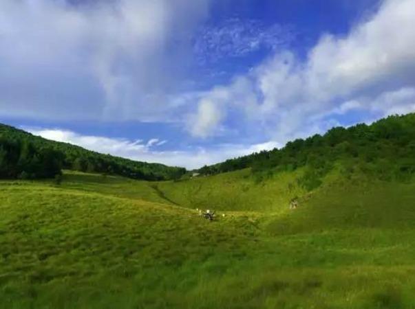8月30-31日全新路线探寻十万亩大草甸