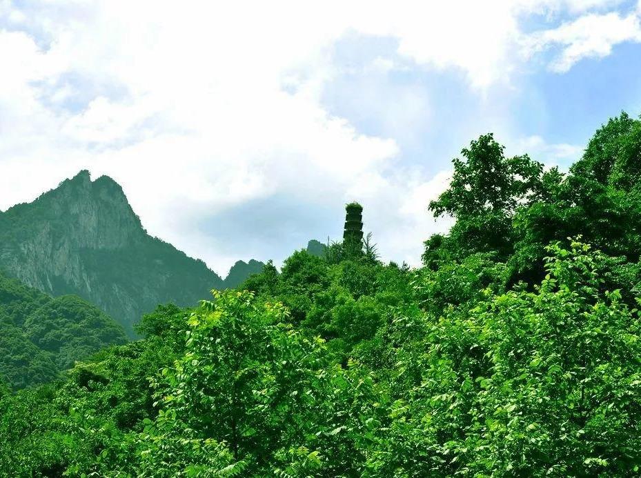9月8日紫阁东岭穿越高冠,休闲徒步摘野果