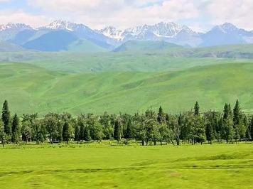 15天游遍两条景观大道川藏青自驾旅拍