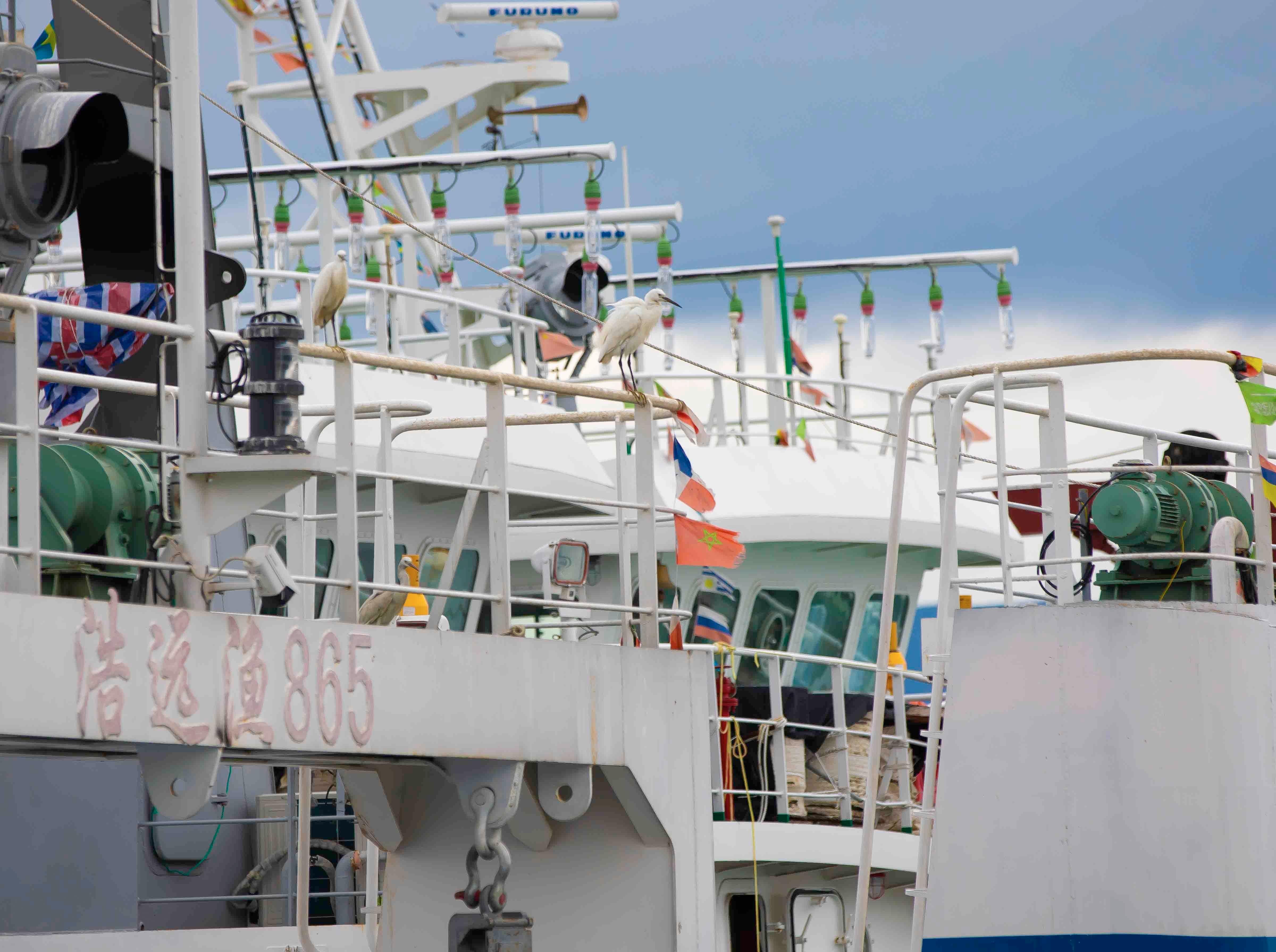 蛇口渔人码头精品长裙风采创作活动