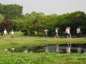 炎炎夏日健步行