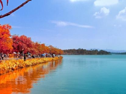 松山湖游山玩水,踏青交友