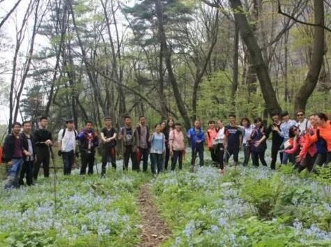 5月19(周日)登顶九鼎万华山徒步