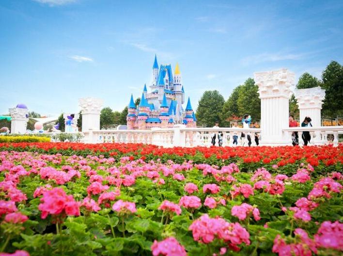 2月19日周日百万葵园赏花、看小松鼠之行