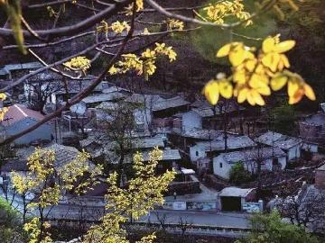 12月7日畅行古商道四古村和南窑西山