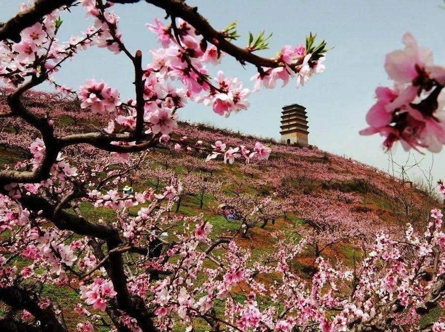 0317踏青季—土门峪穿越蛟峪徒步赏桃花