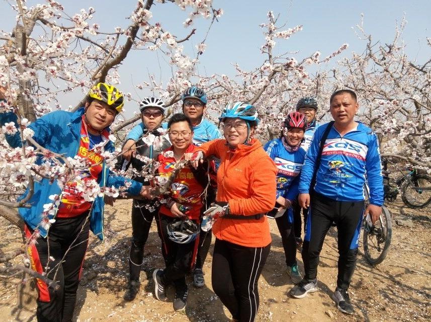 东阿传奇单车—贾庄赏杏花、顺爬狮尔山