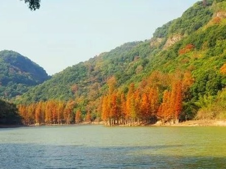 NO129:垂钓中心-卖柴岙-天湖环线