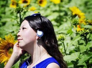 永登向日葵园摄影活动