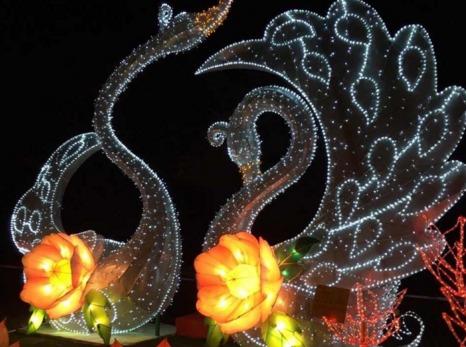 2.11元宵节斜塘老街徒步、腐败、赏灯