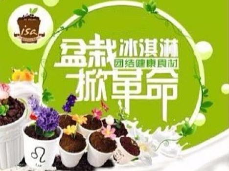 网红盆栽冰淇淋DIY报名啦!