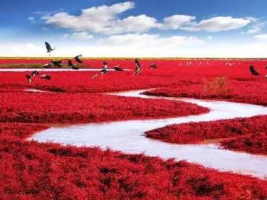 津途部落-国庆-红海滩-本溪洞-红叶丹东