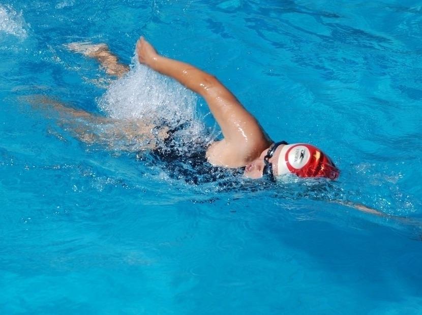 快来参加游泳大赛吧
