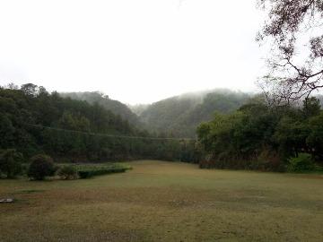 2.19周日,良凤江附近森林穿越