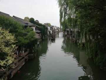 乌镇一日游6.23