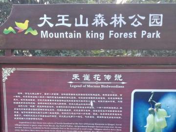 12号星期天约跑大王山