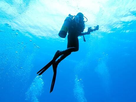 【深潜初体验】一起探索海底世界