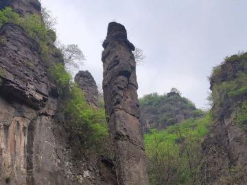 10.13黄梅樟脑~龙卧岩(野线进景区)