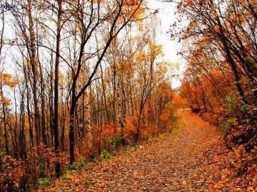 喇叭沟门美丽秋景一日游