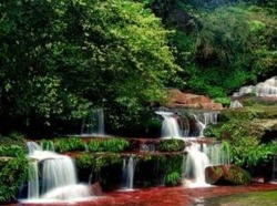 遵义—-赤水风景名胜区一日游