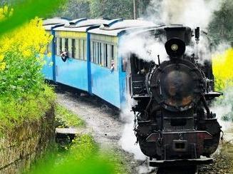 坐上小火车看油菜花