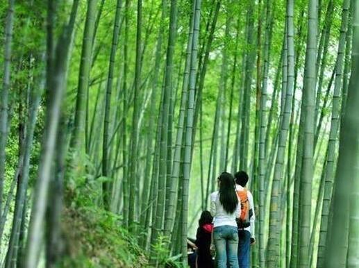 3月16日星溪竹林徒步穿越+竹筒饭