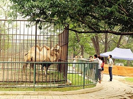 9月17日一起去动物园吧