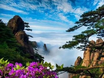 5月18-19日三清山露营千年杜鹃奇景