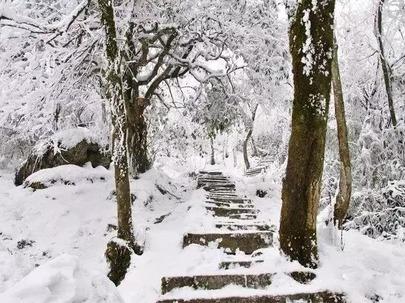 2月1日周四,西岭雪山(前山)一日游