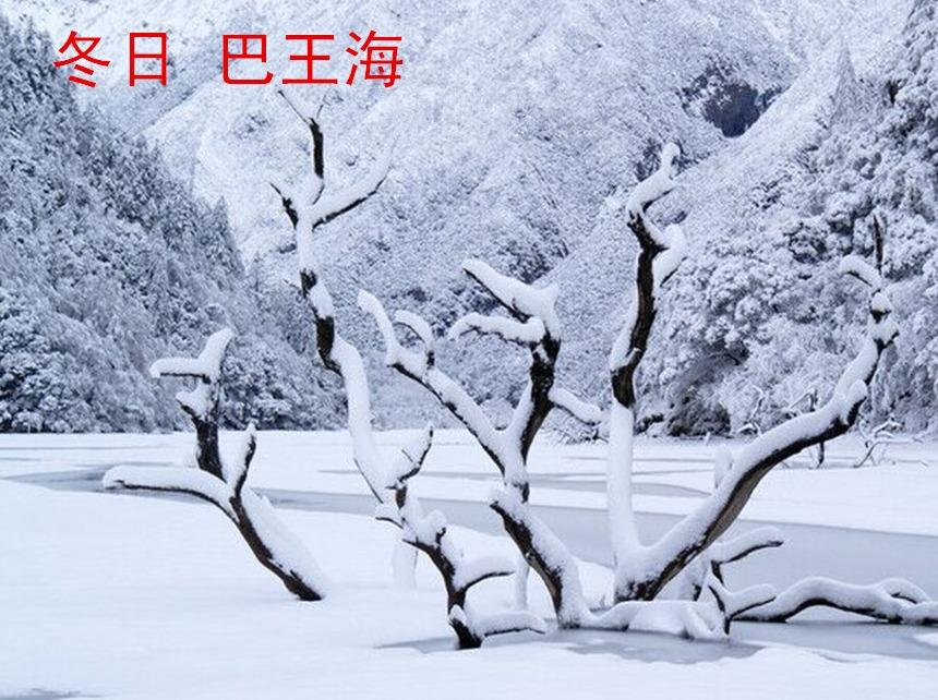 1.12-14号草科泡温泉,巴王海赏雪