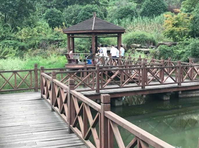 4.27杭州生态园烧烤、摘樱桃