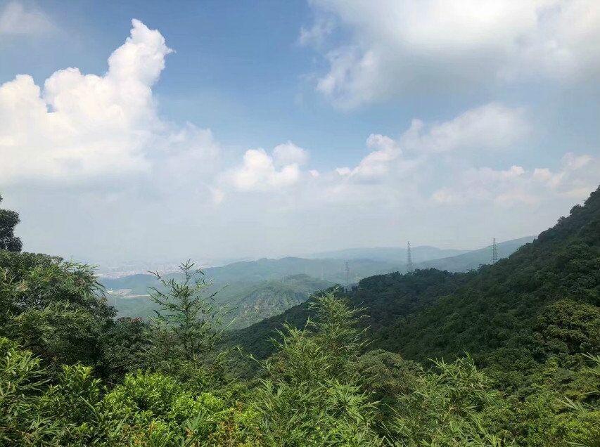 10.20周日莲花山登山徒步