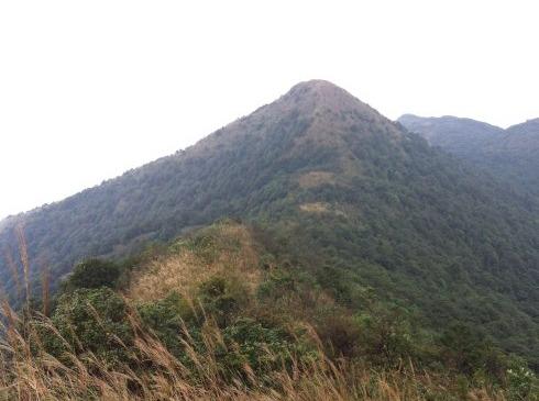4.22 广州第一峰 从化天堂顶(特价)