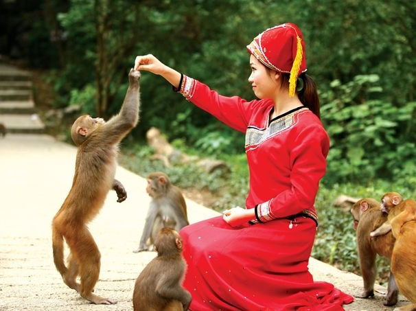 4月29号龙虎山赏猴一日游98元