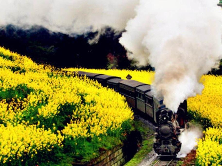 3月2号乐山嘉阳小火车一日徒步摄影