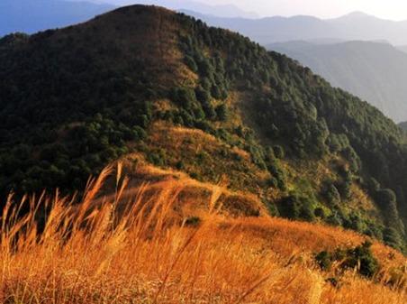 4月29挑战广州最高峰