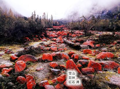 看雪山彩林红石滩,露营温泉烧烤一样都不少