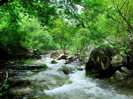 六一青州泰和山景区亲子游