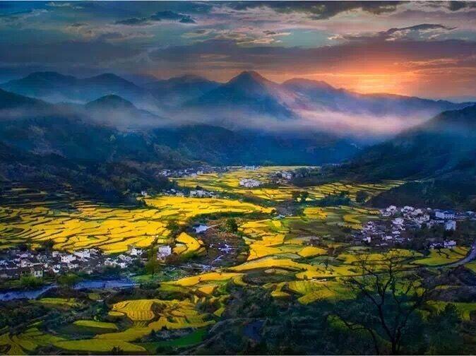"""中国最美乡村""""婺源""""油菜花、万亩梯田花海"""