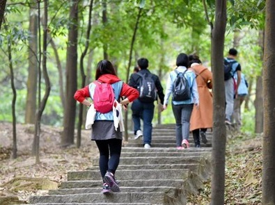 浦江郊野公园徒步交友活动