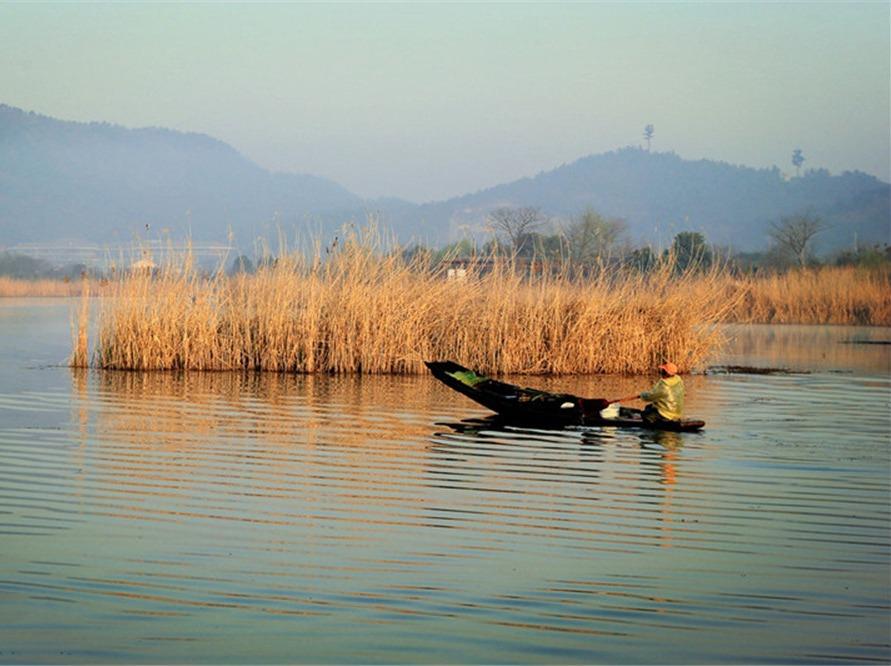 11.17周六,泛舟最美湿地下渚湖